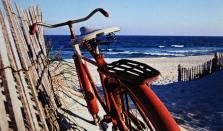 %22Beach Bike%22 By Patti Kelly
