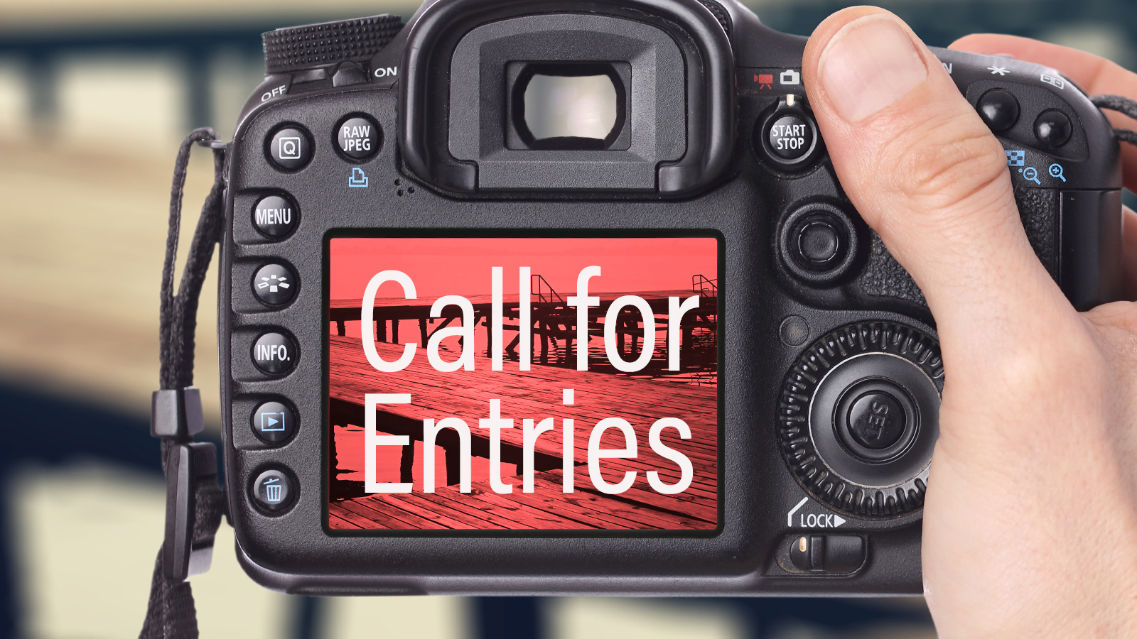 Call 4 Entry Camera Graphic